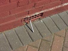 woodworm-problems-floor