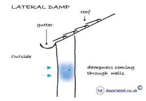 Lateral Dampness