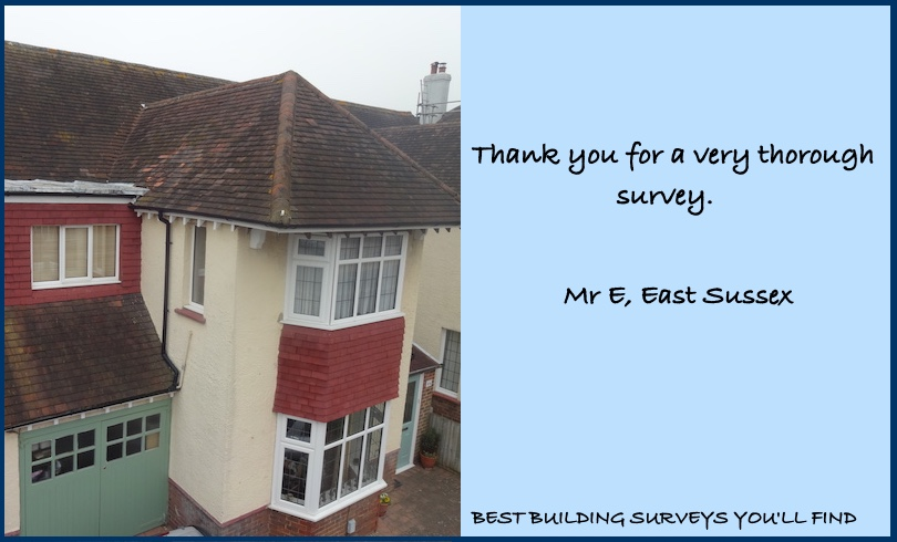 East Sussex Building Survey Review
