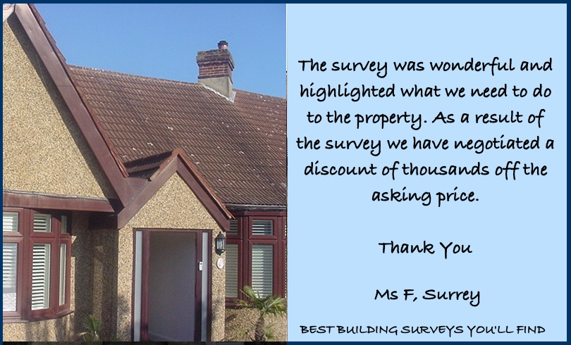 Surrey Survey Review