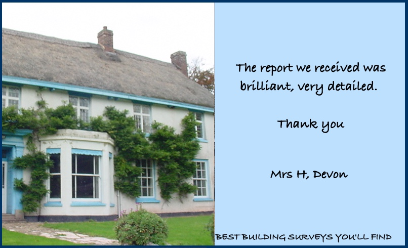 Devon Surveyor Review